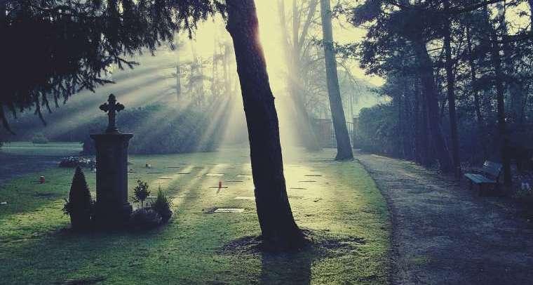 Licht, Sonne, Schatten, Friedhof