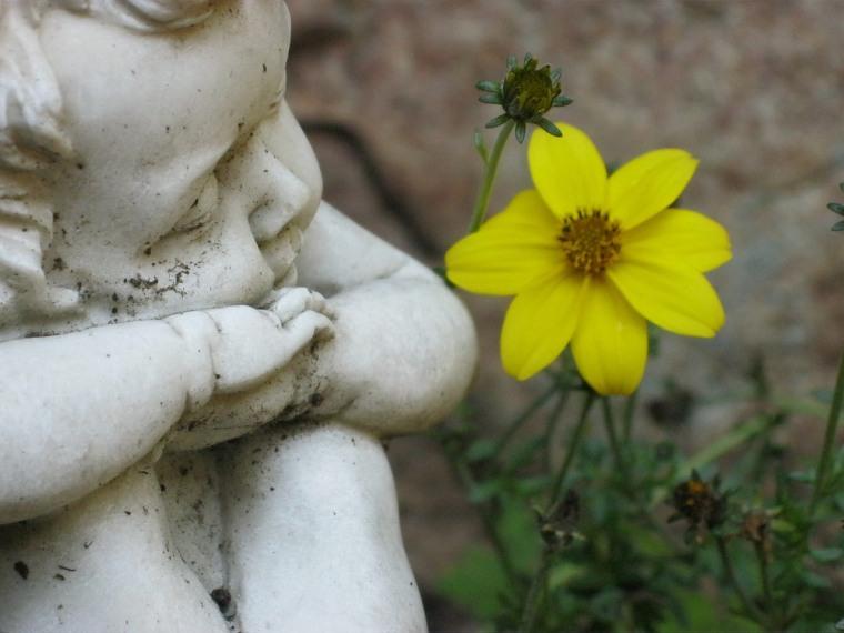 Engel Blumenwiese